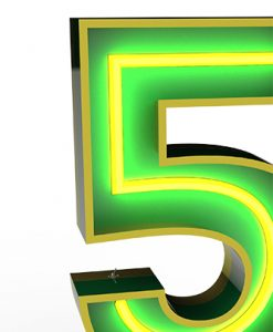 "Five ""5"" Lights up the Neon Night"